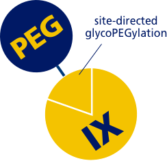 Chart explaining how PEGylation works